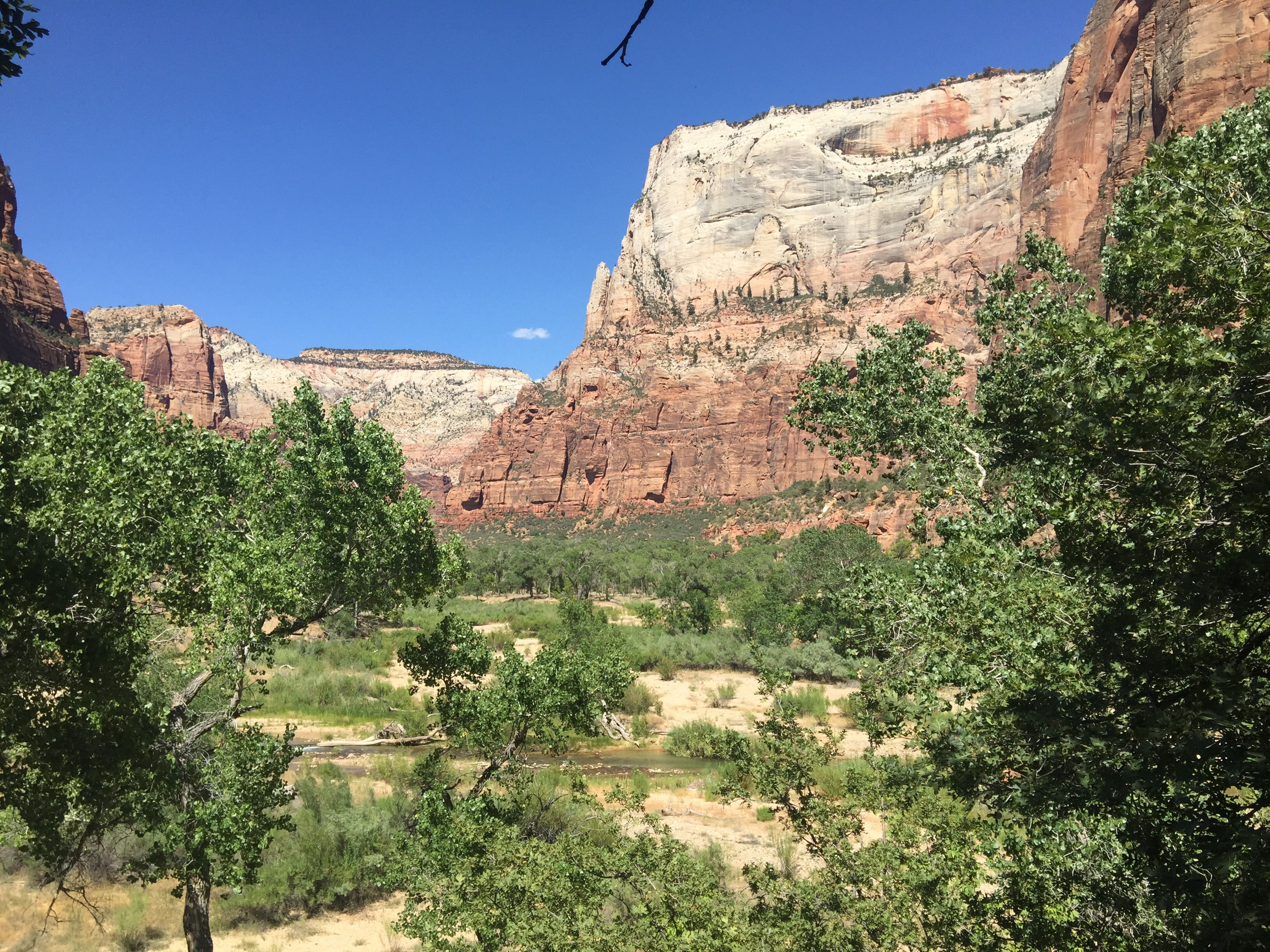 TheMouse sur YouTube: TheMouse au Farwest #13 Tropic – Zion park – Emerald pools – St George