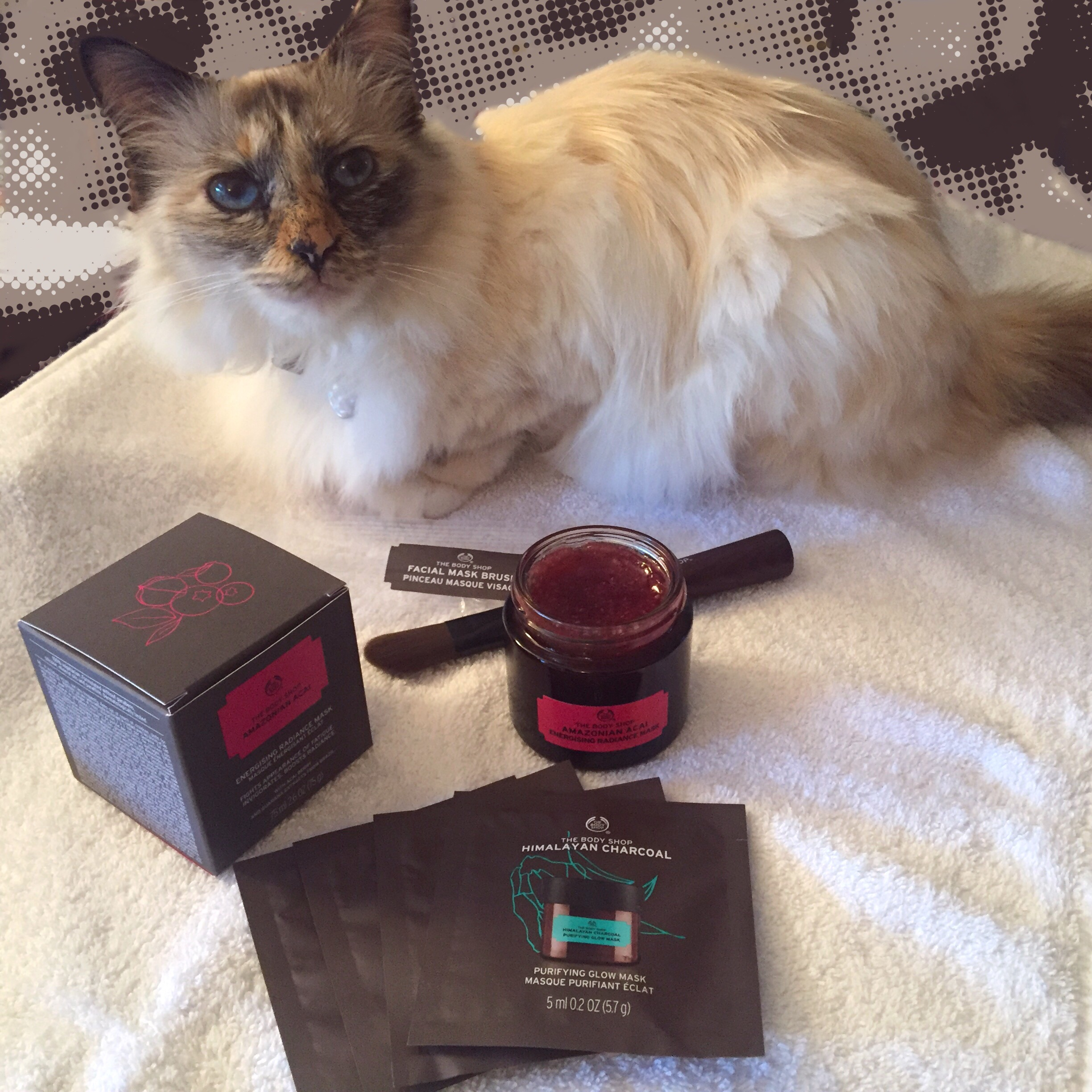 Vie de chat: Jerry et Minnie testent les nouveaux masques The Body Shop